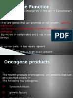Oncogene Function