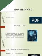 Sinapsis y Transmisión Sináptica