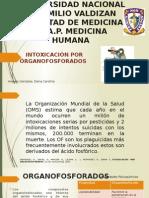 4.Arevalo Gonzales Diana c. Intox Organofosforado