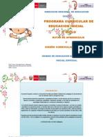 Progerewrramacurricular Inicial Integrado Dcn_rutas