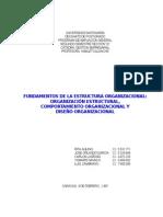 Estructura Comportamiento y Diseño Organizacional