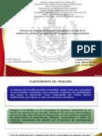 CONGRESO PEDAGOGICO AGUSTIN ARMARIO PROYECTO CAPITULO I.pptx