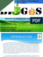 biogas de residuos organicos