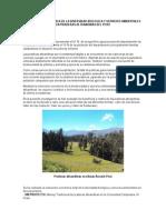 Valoracion Economica de La Diversidad Biologica y Servicios Ambientales en Praderas Altoandinas