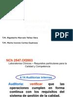 auditorasinternas1-120106142204-phpapp01