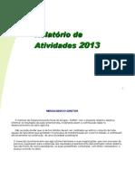Relatórios de Atividades 2013