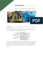 Seleccion Rapida de Motores Electricos - DELCROSA.pdf