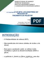 Seminário de Mestrado Fabricio Maestá Bezerra