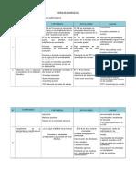 Matriz Diagnóstico Word Completo