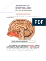 neurorradiologia CONCEITOS BÁSICOS