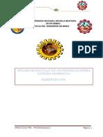 practica informe.docx