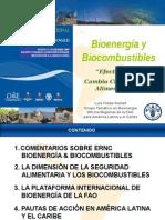 BIOENERGIA Para La Region de La Araucania