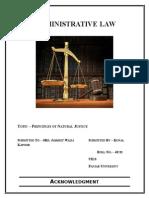 Adm Project (2)