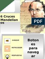1  d  practica virtual cruces_mendelianos.pptx