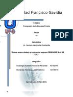 1º AVANCE PRESUPUESTO.doc
