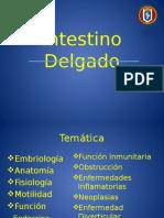 47 in Testino Delgado