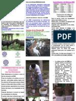 05_1204_Triptico_Bloques_Multinutricionales.pdf