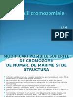 LP 6 Anomalii Cromozomiale
