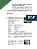 CARBONATOS, Nitratos, Boratos, Sulfatos