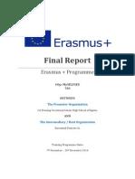 final report it