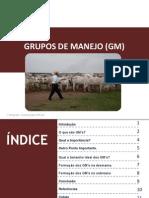 GRUPOS DE MANEJO