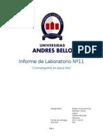 Informe de Laboratorio Nº11