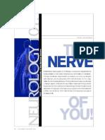La Medula Espinal y El Cerebro x Joe Dispenza