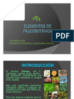 Viii. Elementos de Paleobotánica