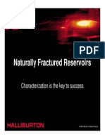 Naturally Fractured Reservoirs Characterization is the Key to Success