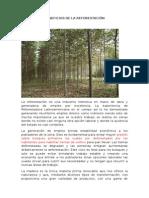 Beneficios de La Reforestacion