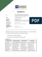 Informe Parcial 2014-II
