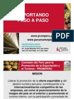EXPORTANDO PASO A PASO1