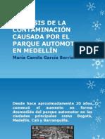 Análisis de La Contaminación Causada Por El Parque.camila