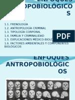 ENFOQUES ANTROPOBIOLÓGICOS (1)