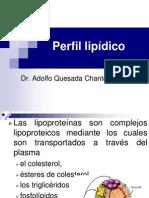 Perfil lipidico.pdf