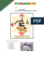 PROYECTO-LABO.pdf