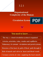 3 2 2 circulatory system