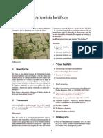 Artemisia lactiflora.pdf