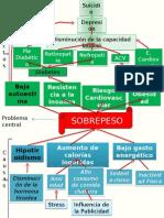 Arbol Causa Efecto- SOBREPESO