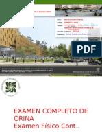 3. Examen Completo de Orina Degraba (Continuación)