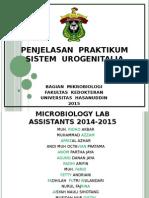 Urogenitalia (1).pptx