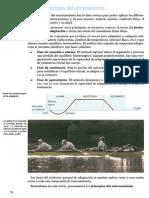 principios+de+entrenamiento+libro
