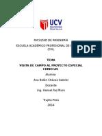 Informe Proyecto Especial Chinecas