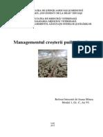 Managementul puilor broileri