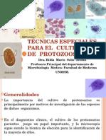 2metodos de Cultivo de Protozoarios