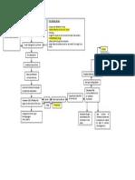 Pathophysiology of AML