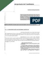 6 A Interpretação da Constituicao.doc