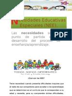 Ecesidades Educativas Especiales (NEE)