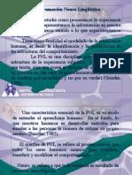 PNL-Submodalidades