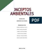 CONSEPTOS AMBIENTALES.docx